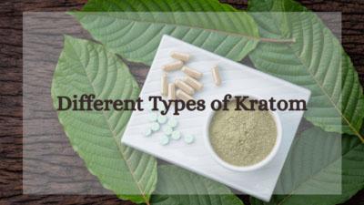 Different Types of Kratom - Oasis Kratom