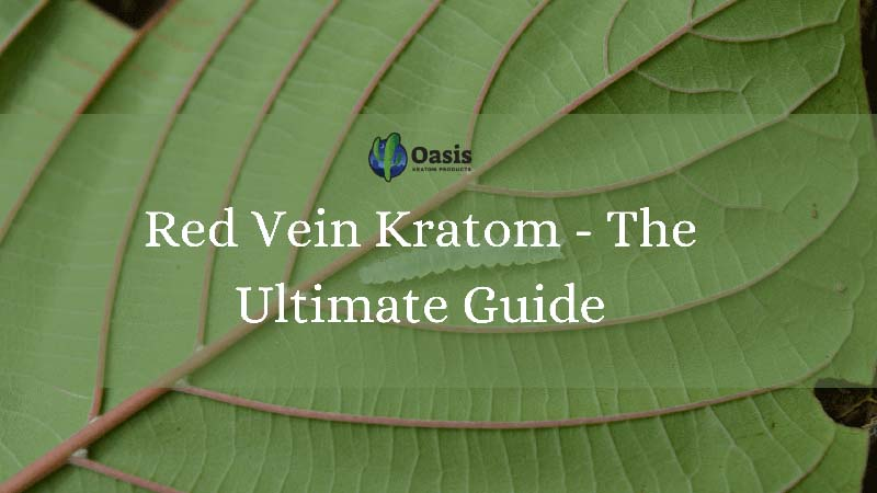 Red Vein Kratom - The Ultimate Guide