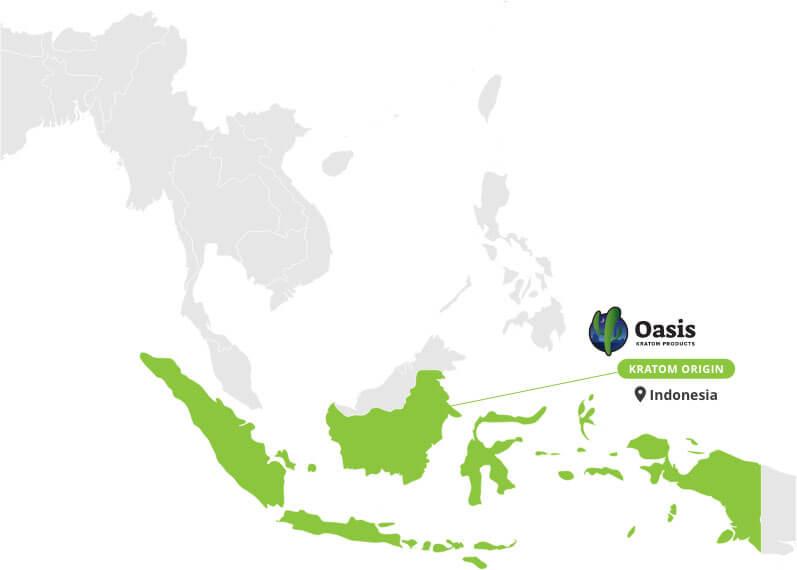 Origin of Green Malay Kratom Powder - By Oasis Kratom