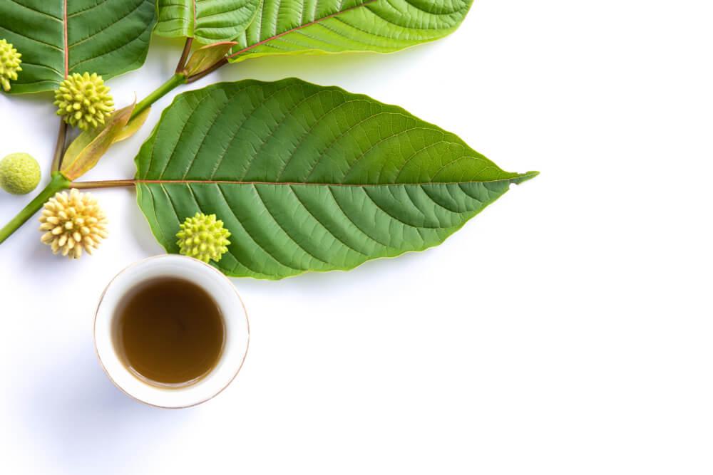 White Vein Kratom - tea