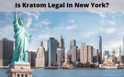 Is Kratom Legal in New York - Oasis Kratom