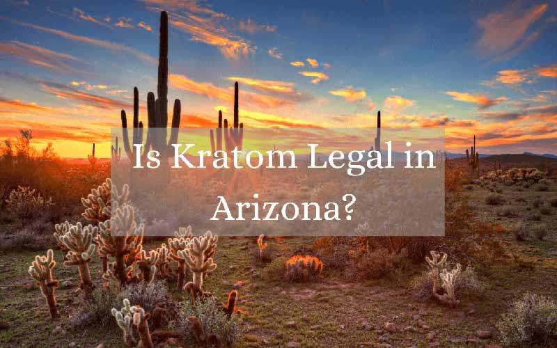Is Kratom Legal in Arizona - by Oasis Kratom