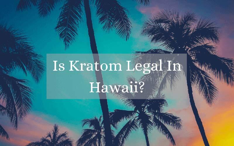 Is Kratom Legal In Hawaii - by Oasis Kratom