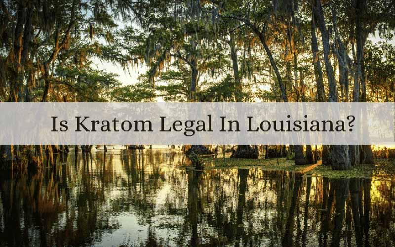 Is Kratom Legal In Louisiana - by Oasis Kratom