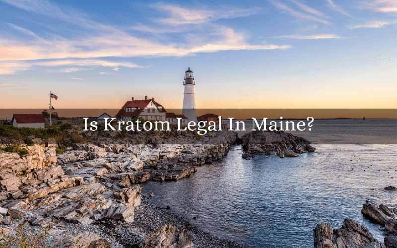 Is Kratom Legal In Maine - by Oasis Kratom