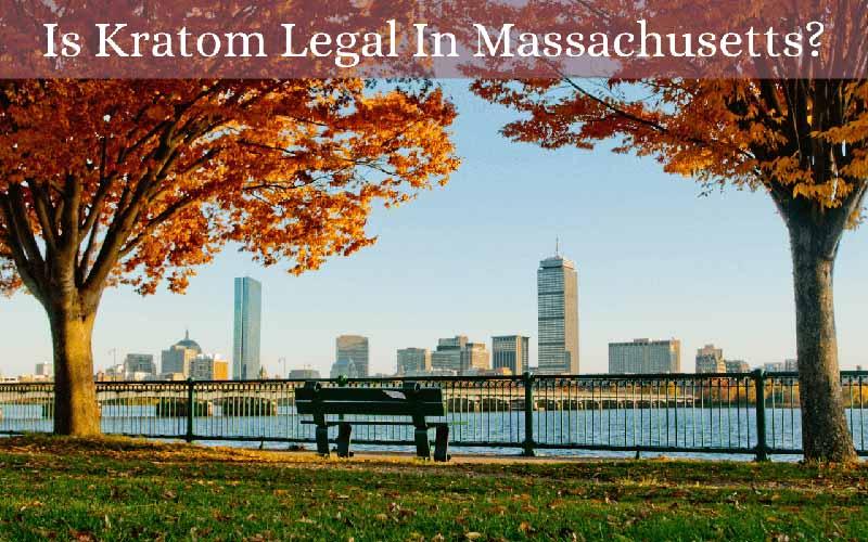 Is Kratom Legal In Massachusetts - by Oasis Kratom
