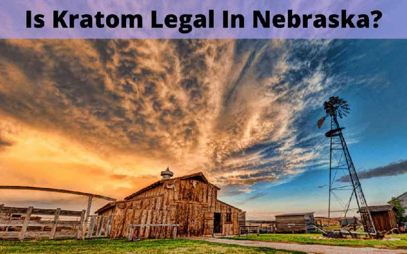 Is Kratom Legal In Nebraska - by Oasis Kratom