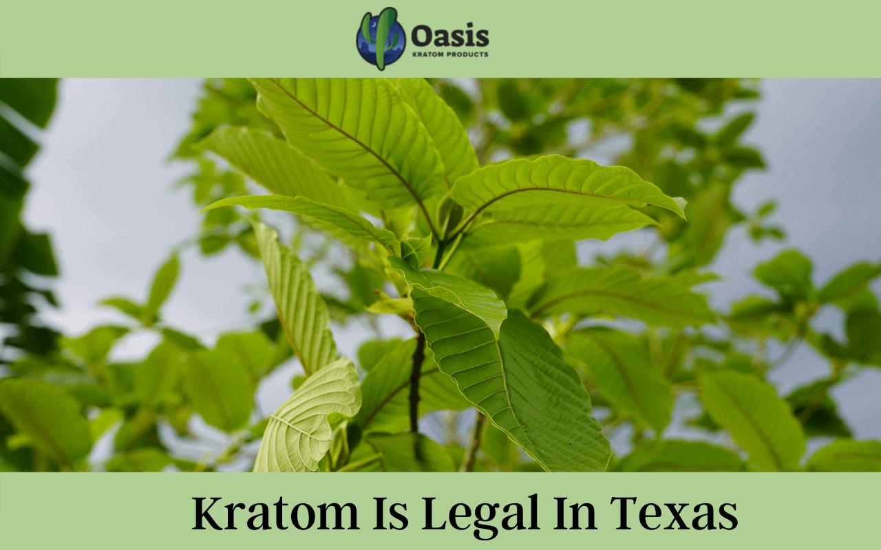 Kratom is legal in Texas