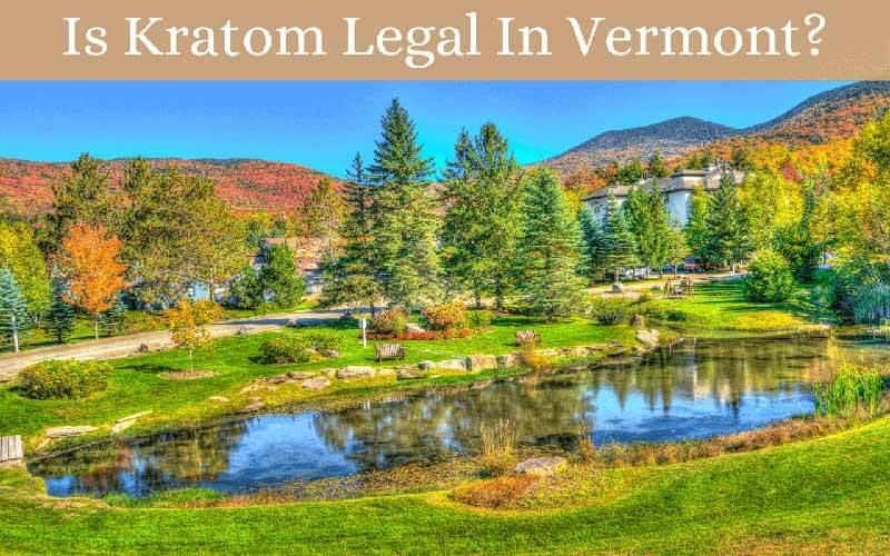 Is Kratom Legal In Vermont - by Oasis Kratom