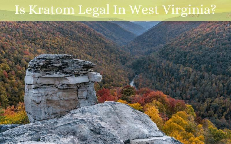 Is Kratom Legal In West Virginia - by Oasis Kratom
