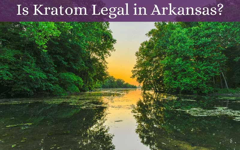Is Kratom Legal in Arkansas - by Oasis Kratom