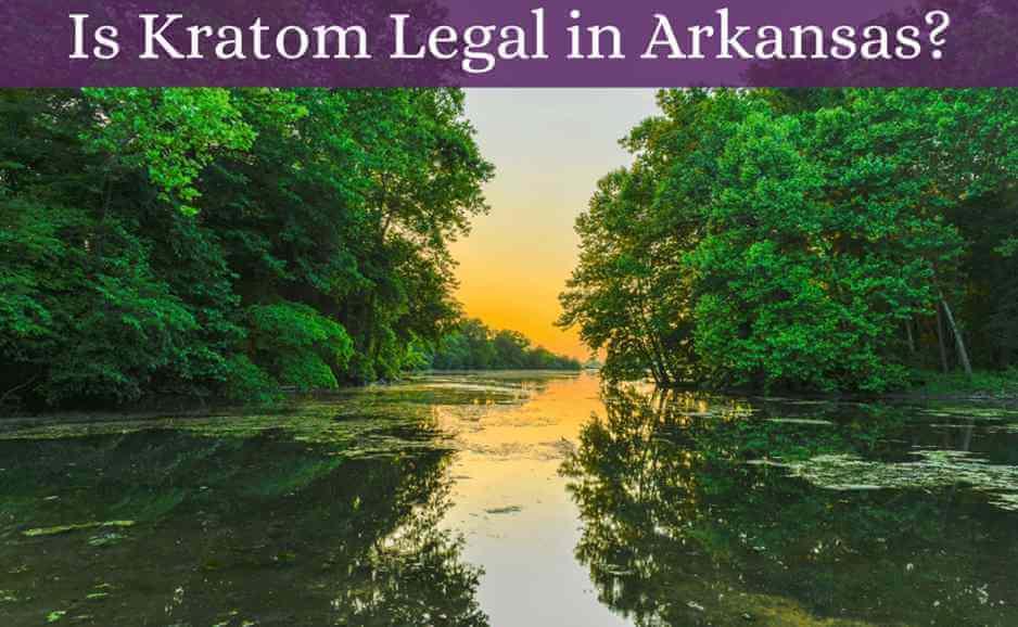 is kratom legal in arkansas-featured image-oasis kratom