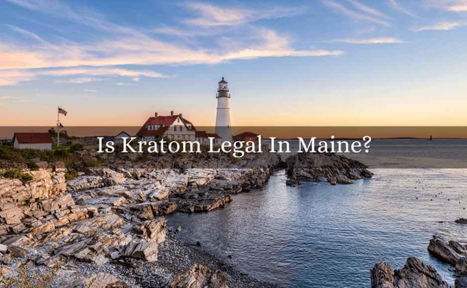 is kratom legal in maine-featured image-oasis kratom