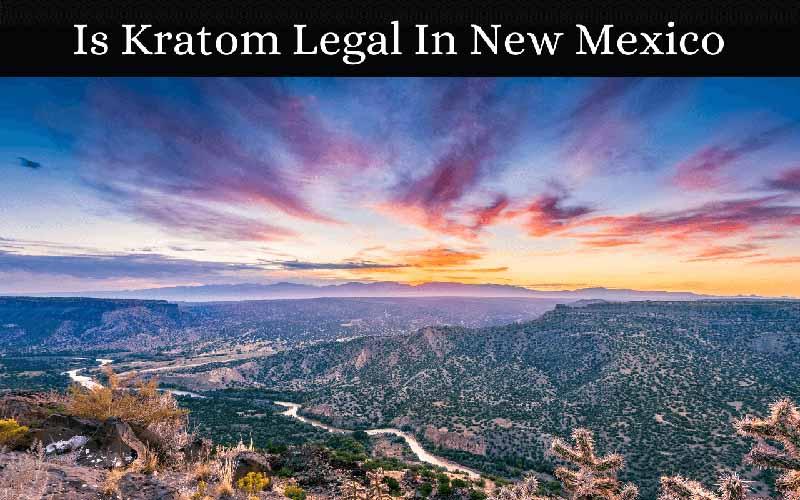 Is Kratom Legal In New Mexico - by Oasis Kratom