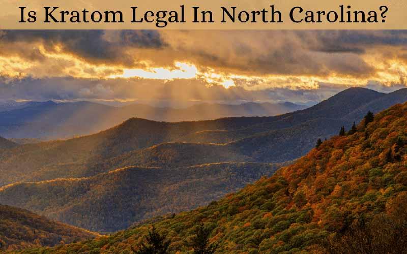 Is Kratom Legal In North Carolina - by Oasis Kratom