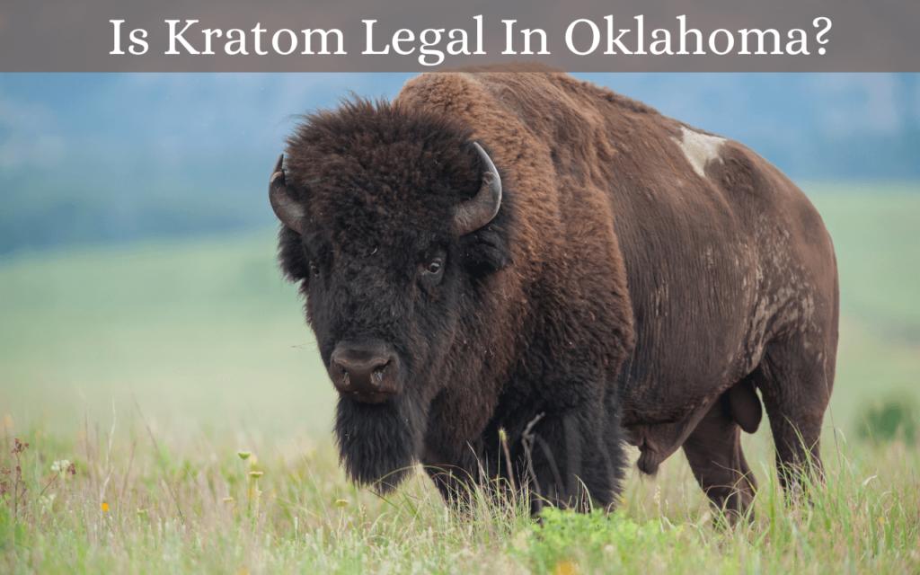 Is Kratom Legal In Oklahoma?