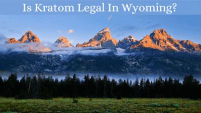 Is Kratom Legal In Wyoming - Oasis Kratom