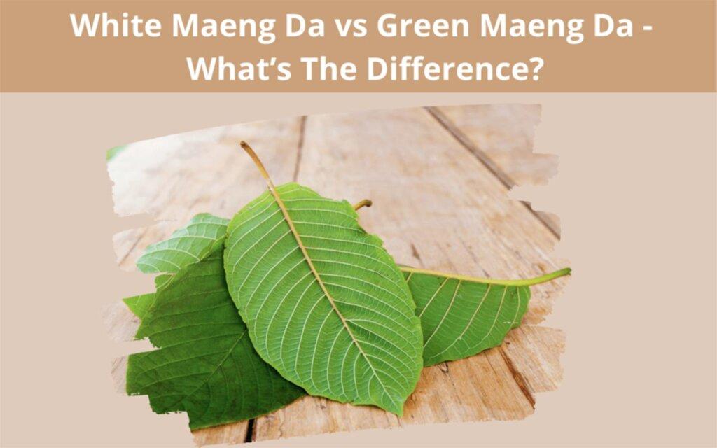 White Maeng Da vs Green Maeng Da-Oasis Kratom