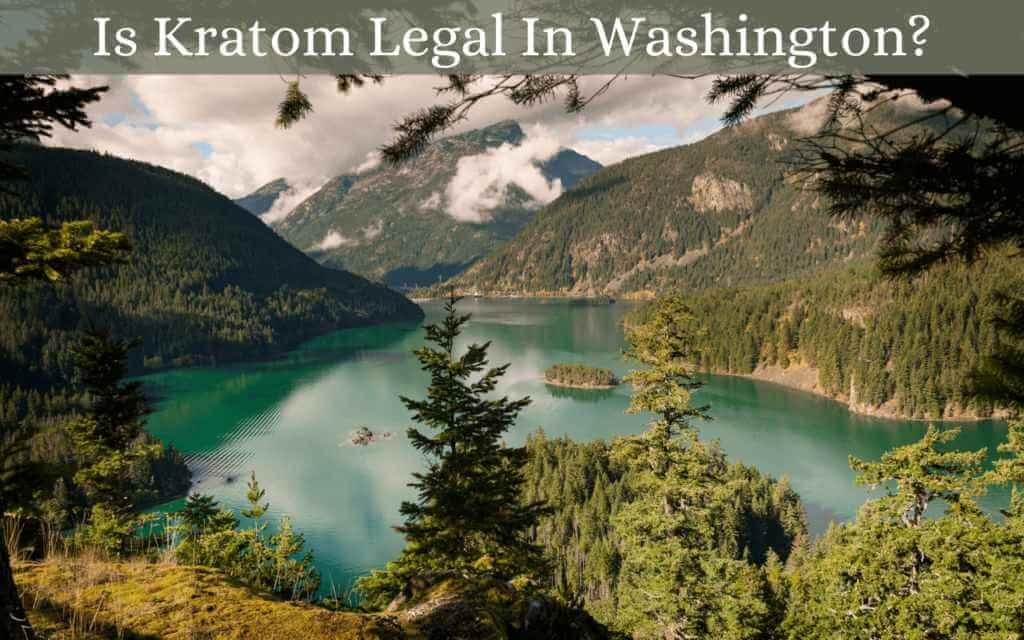 is kratom legal in washington - oasis kratom