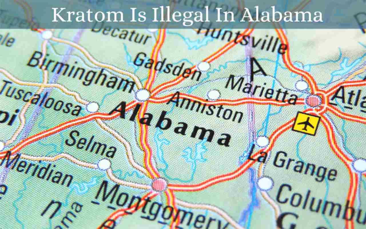 kratom is illegal in alabama - oasis kratom