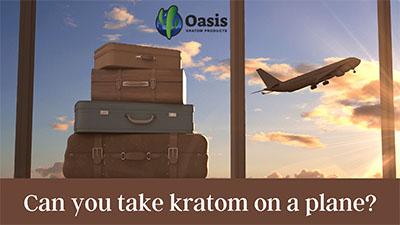 Can You Take Kratom On A Plane - Oasis Kratom