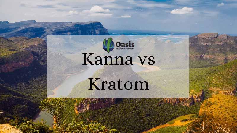 Kanna vs Kratom - by Oasis Kratom