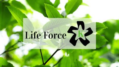 Life Force Kratom Vendor Review - Oasis Kratom