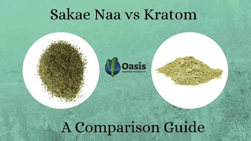 Sakae Naa vs Kratom- A Comparison Guide by Oasis Kratom