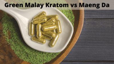 Comparing Green Malay Kratom vs Green Maeng Da - Oasis Kratom