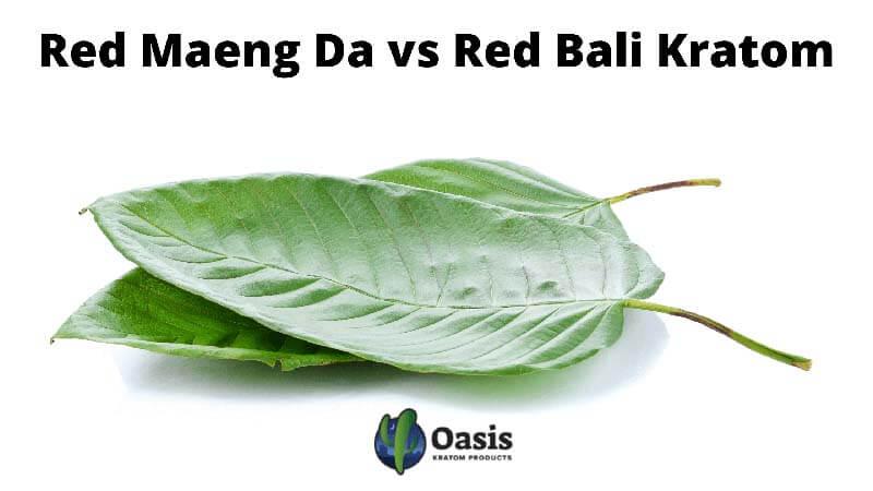 Red Maeng Da vs Red Bali Kratom - Comparison by Oasis Kratom