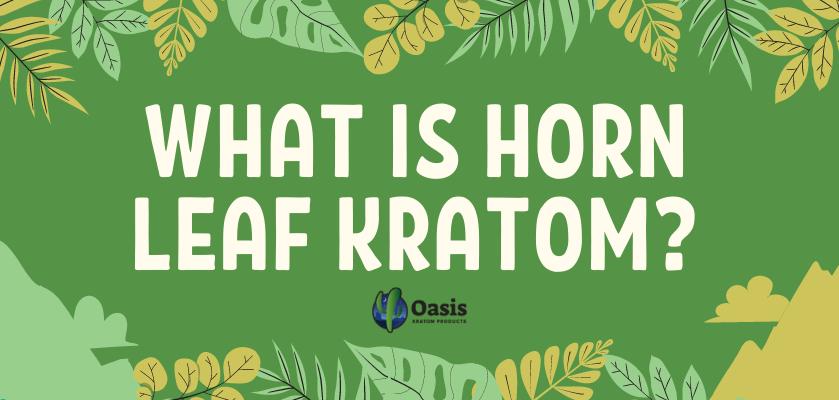 What Is Horn Leaf Kratom?