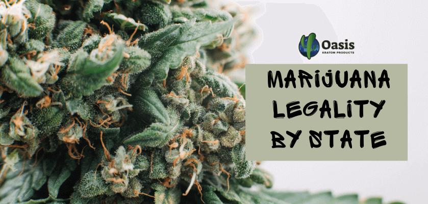 Marijuana Legality By State