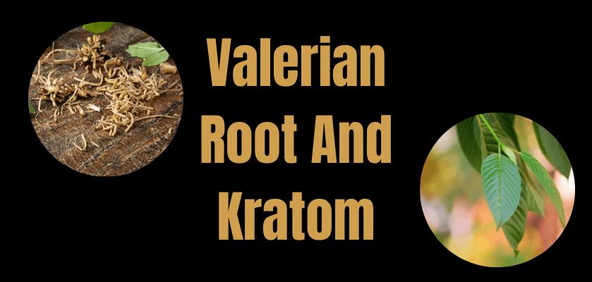 valerian root and kratom