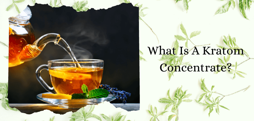 What Is A Kratom Concentrate