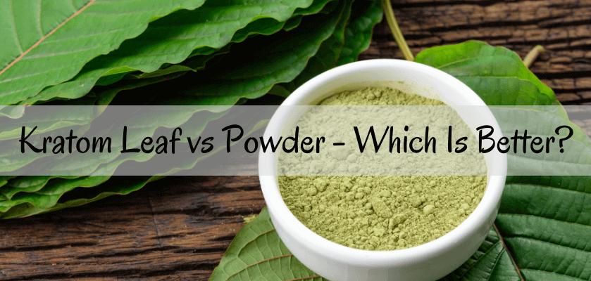 Kratom Leaf vs Powder